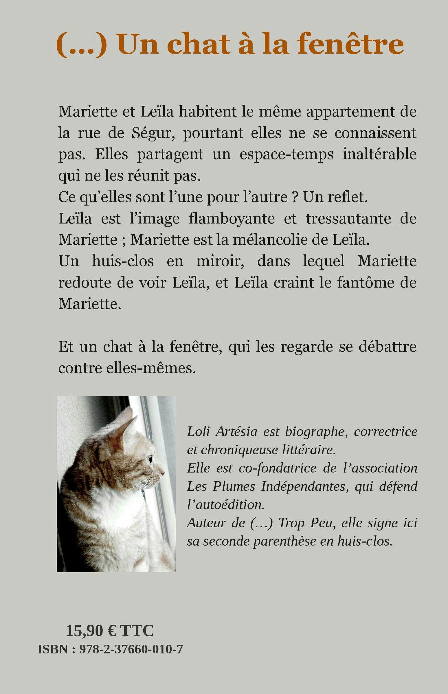 Notice Bibliographique Un Chat à La Fenêtre Loli Artesia Bnf