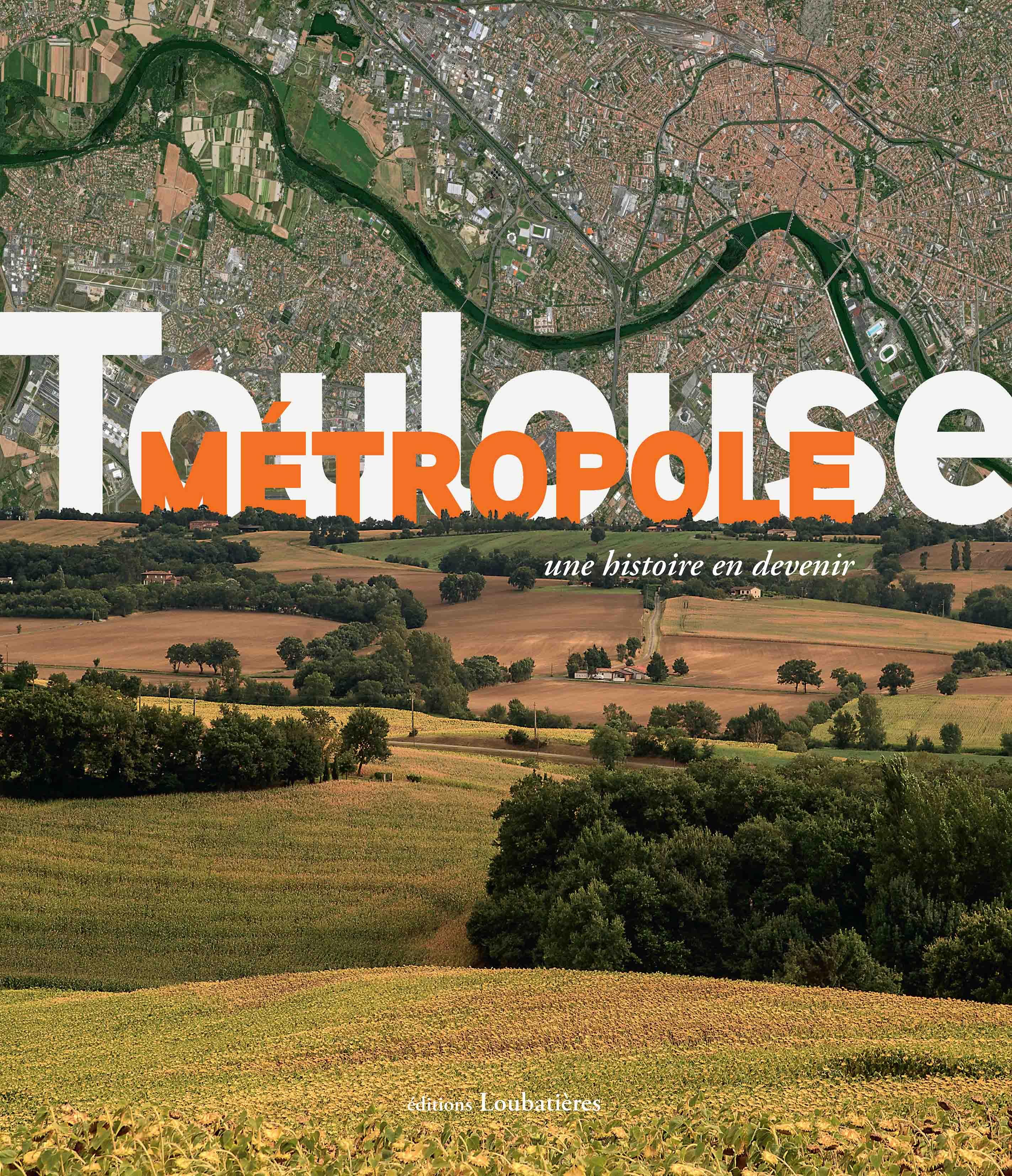 Magasin Arts Plastiques Toulouse notice bibliographique toulouse métropole : une histoire en